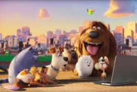 The Secret life of Pets NEW